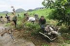 【参加者募集】11/28開催「松毛川トラストの森づくり」