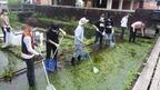 【参加者募集】10/9開催「三島梅花藻の里・緑と水の杜ワンデイチャレンジ」