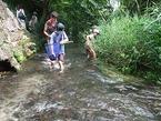 源兵衛川生き物観察会 第1回「川に入って魚と川虫をしらべてみよう!」
