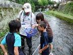 源兵衛川生き物観察会 第2回「源兵衛川の川虫と野鳥をかんさつしよう」