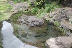 「鏡池」の原風景が復活!