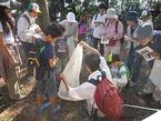 鎮守の森探検隊(7)ふるさとの宝物・鎮守の森に育つ昆虫と植物の観察会