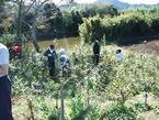 11/12(土) ふるさとの川を守れ!松毛川での植林体験と植生・野鳥を学ぶ