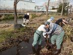 源兵衛川7ゾーン環境再生ワンデイチャレンジ2「ヘドロ除去等環境改善大作戦」