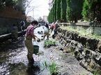 3/20源兵衛川中流部環境再生ワンデイチャレンジを実施