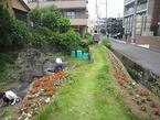 6/2 鏡池ミニ公園2012初夏